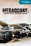 cutremurul de la fukushima - ora care a zdruncinat japonia