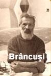 Brancusi sau scoala de a privi
