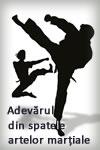 Adevarul din spatele artelor martiale