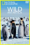 Antarctica sălbatică