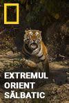 Extremul Orient sălbatic