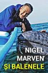 Nigel Marven și balenele